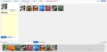 Flickr immagine 6 Thumbnail