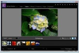 Flickroom imagen 1 Thumbnail