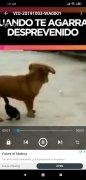 FlixPlayer imagen 3 Thumbnail