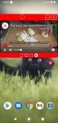 Float Tube image 5 Thumbnail