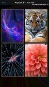 Wallpapers HD image 2 Thumbnail