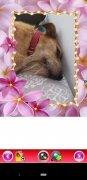 Liebe & romantische Fotorahmen image 2 Thumbnail