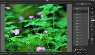 Fotor immagine 2 Thumbnail