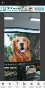 FotoRus imagem 8 Thumbnail