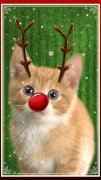 Christmas Booth: Festive Photo Fun + Xmas Stickers image 2 Thumbnail