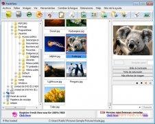 Fresh View immagine 1 Thumbnail