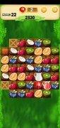 Fruit Bump 画像 12 Thumbnail