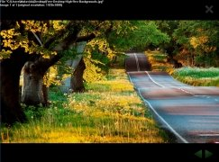Fullscreen Photo Viewer immagine 2 Thumbnail
