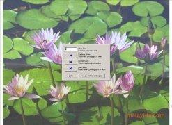 FxFoto imagen 2 Thumbnail