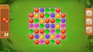 Gardenscapes image 4 Thumbnail
