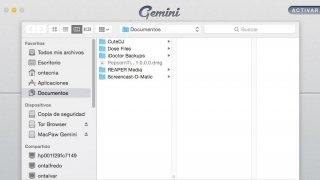 Gemini Изображение 2 Thumbnail