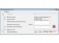 GetWindowText imagen 4 Thumbnail