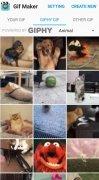 GIF Maker imagem 3 Thumbnail