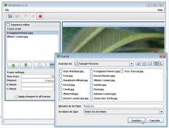 GiftedMotion image 4 Thumbnail