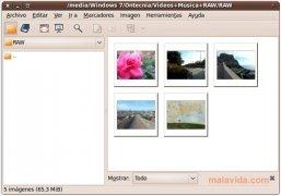 gThumb imagem 2 Thumbnail