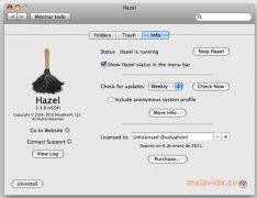 Hazel imagem 4 Thumbnail