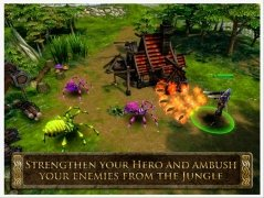 Heroes of Order & Chaos immagine 5 Thumbnail