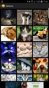 Imágenes para Whatsapp imagen 3 Thumbnail