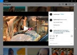 Instagram immagine 5 Thumbnail