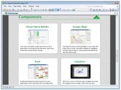 Instant Developer image 5 Thumbnail