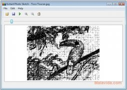 Instant Photo Sketch imagem 3 Thumbnail