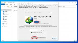 Internet Download Manager immagine 5 Thumbnail