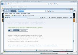 Internet Explorer 8  Español imagen 3