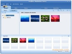 InterVideo MediaOne Gallery immagine 4 Thumbnail