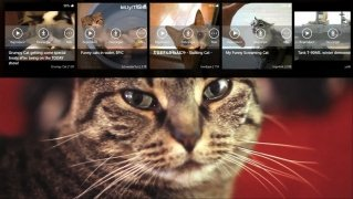 iTube Downloader image 7 Thumbnail