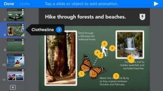 Keynote immagine 2 Thumbnail