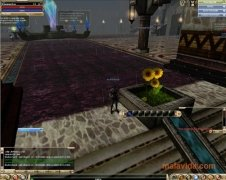 Knight Online imagen 3 Thumbnail