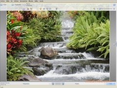 Kodak EasyShare image 5 Thumbnail