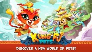 Kung Fu Pets Изображение 1 Thumbnail