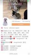 Kwai - Compartilhe seu vídeo imagem 6 Thumbnail