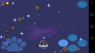 Lil BUB's HELLO EARTH image 8 Thumbnail