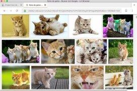 Liri Browser image 3 Thumbnail