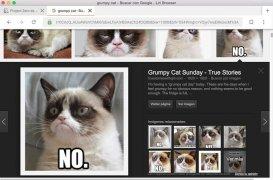 Liri Browser image 4 Thumbnail