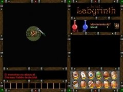 Lost Labyrinth immagine 1 Thumbnail