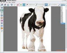 Magix FunPix Maker imagem 2 Thumbnail