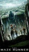 Maze Runner: correr o morir imagen 1 Thumbnail
