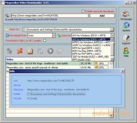 Megavideo Video Downloader image 3 Thumbnail
