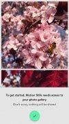 Motion Stills - GIF, Collage imagen 2 Thumbnail