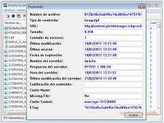 MozillaCacheView bild 2 Thumbnail