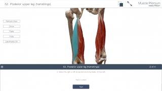 Muscle Premium immagine 10 Thumbnail