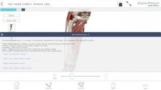 Muscle Premium imagen 6 Thumbnail
