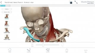 Muscle Premium imagen 7 Thumbnail