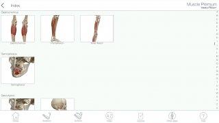 Muscle Premium imagen 8 Thumbnail