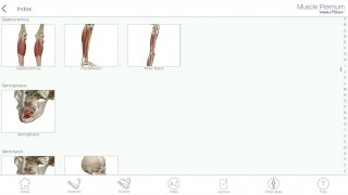 Muscle Premium image 8 Thumbnail