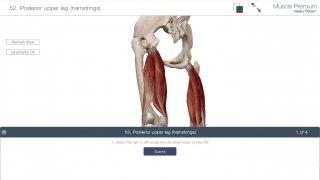 Muscle Premium image 9 Thumbnail