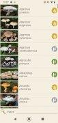 Mushrooms App image 11 Thumbnail